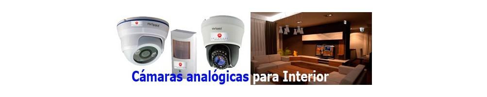 Analogicas Interior